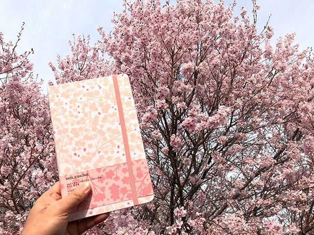 春を楽しむ「サクラノート」の作り方・旅ノート番外編